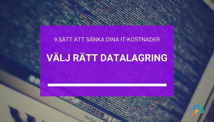 sank-it-kostnader-ratt-datalagring